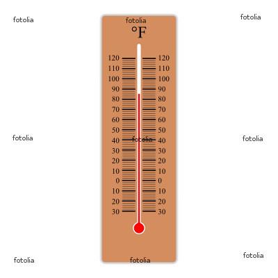 missmanganssciencesite / 1st Fahrenheit Thermometer